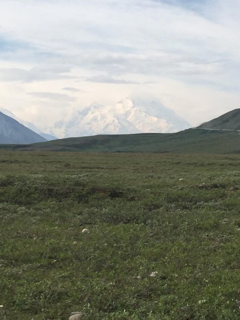 Alex - Mt McKinley pic